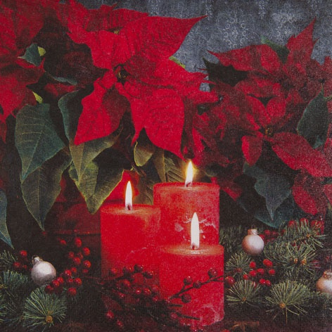 Servietten Candlelight Poinsettia